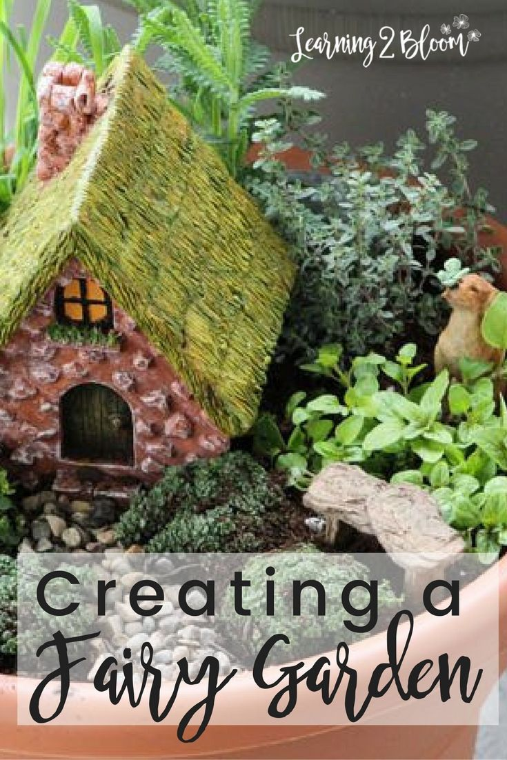 DIY creating a fairy garden. I had so much fun planting a fairy garden with my kids. They love checking on the fairies each day.