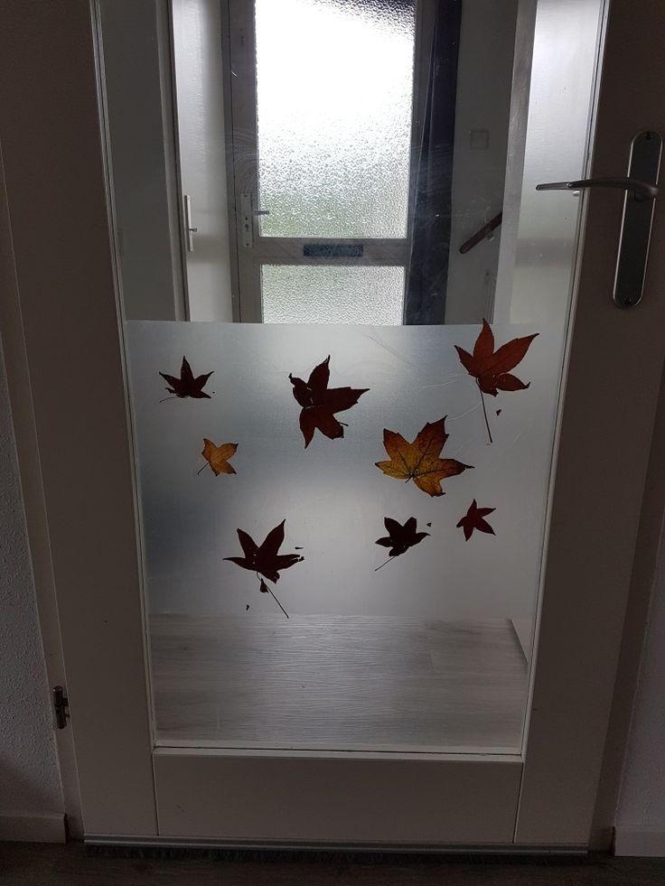 Blaadjes achter raamfolie  geplakt voor een herfst sfeer