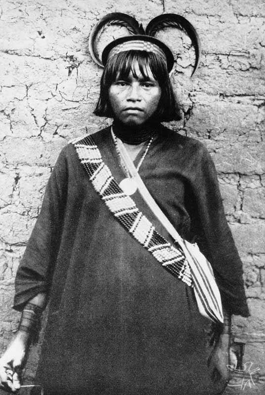 História no Peru > Ashaninka