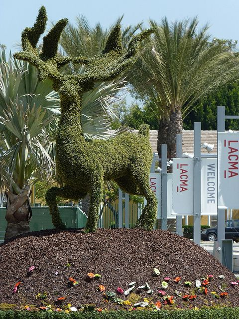 Tim Burton show at Los Angeles County Musuem of Art Fun topiary out front from Edward Scissorhand movie. Angie Naron photo