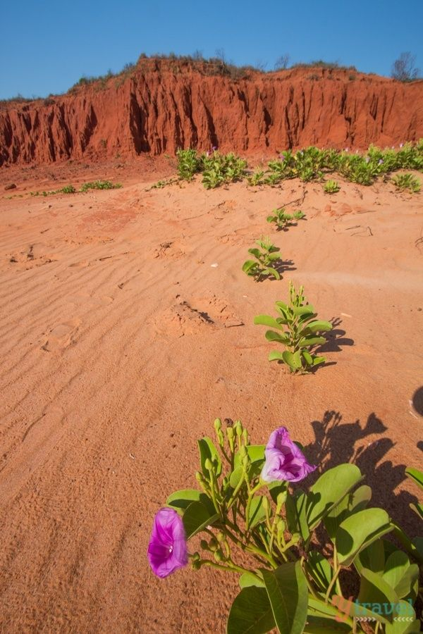 The colours of Broome in Western Australia - visit our blog for a complete guide on what to do in this awesome town!