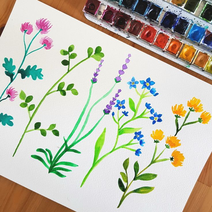 Blumenspass | Malen lernen, Blumen malen, Aquarell blumen