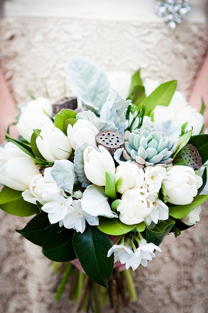 Bridal bouquet designed by Local Color Flowers filled with locally grown tulips, paperwhites, succulents, dusty miller, evergreen foliage, camelia leaves and mini pine cones. February