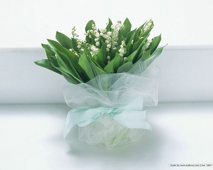 Wedding Flower Bouquets - Lily Of The Valley, Wedding Flower Bouquet  Picture   9