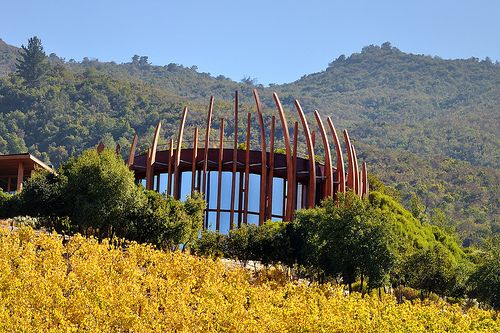 Wine Tasting outside of Santiago in the Colchagua Valley (Lapostolle Vineyard)
