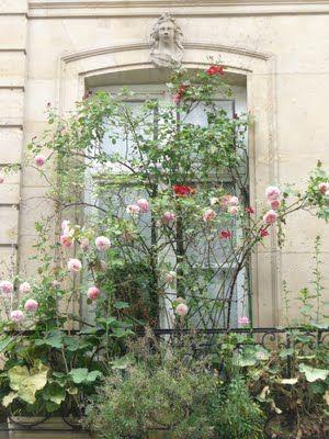Les balcons de Paris: Des balcons de tous les types