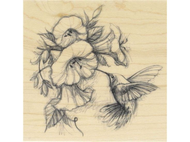 hummingbird with flowers rubber stamp shops feathers