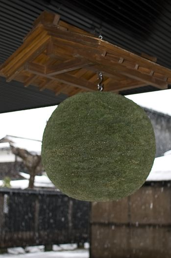 Sugidama is hung at the sake brewery. Fresh sake is available when the sugidama turns brown.