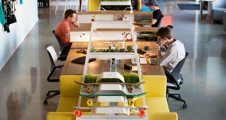 bivi setting with board rack