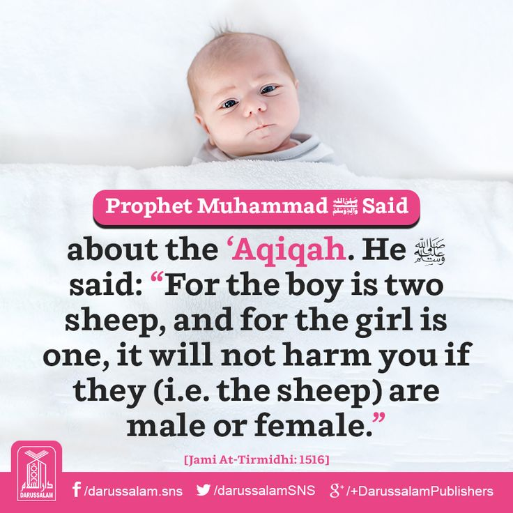 "Daily Hadith | Aqiqah of Newborn Narrated Umm Kurz: That she asked the Messenger of Allah ﷺ about the 'Aqiqah. He said: ""For the boy is two sheep, and for the girl is one, it will not harm you if they (i.e. the sheep) are male or female."" [Jami At-Tirmidhi, Book on Sacrifices, Hadith: 1516] Chapter: The Adhan in the ear of the newborn. Grade: Sahih #Aqiqah #Hadith"