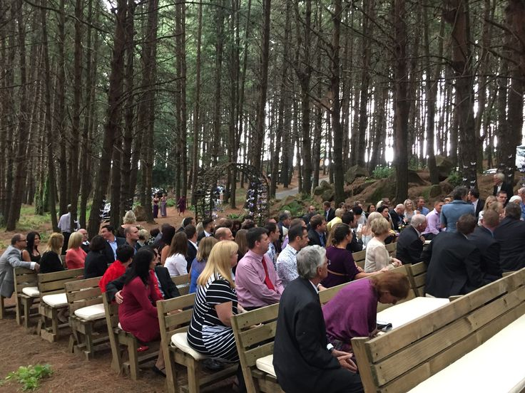 Wedding in the woods @Dunkeld Estate