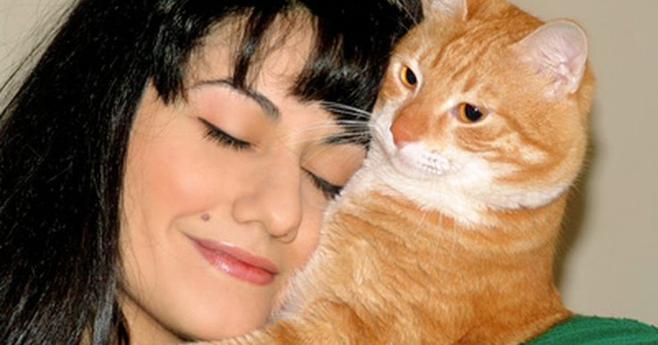 Ciclosporina líquida para alergias de gatos. Gatos são tão propensos a alergias quanto seres humanos. Pulgas, poluentes ambientais e até mesmo certos alimentos podem desencadear uma reação alérgica em alguns gatos. Veterinários prescrevem frequentemente ciclosporina no tratamento de alergias, especialmente dermatite atópica, que é uma reação da pele centrada a alérgenos inalados. A ...