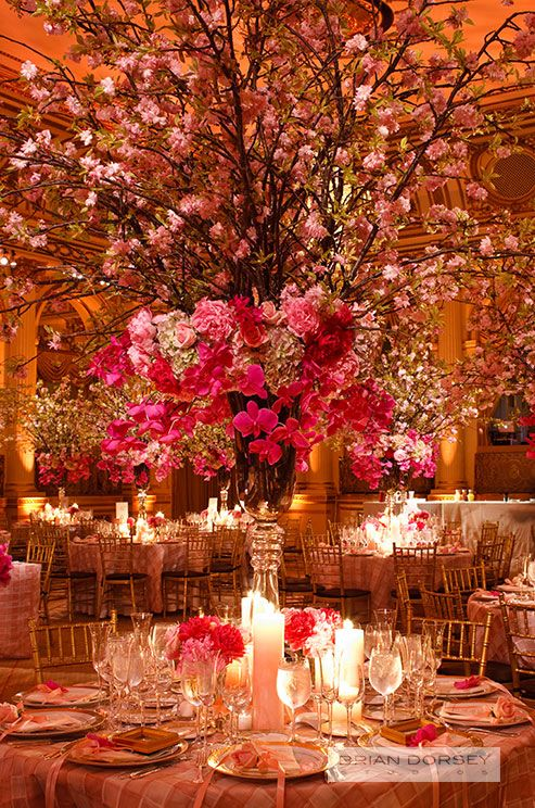 A grand wedding centerpiece of orchids and romantic cherry blossoms serves as a focal point for this elegant indoor wedding. View more centerpiece inspiration, check out our gallery: http://www.colincowieweddings.com/the-galleries/wedding-decor/tall-wedding-centerpieces