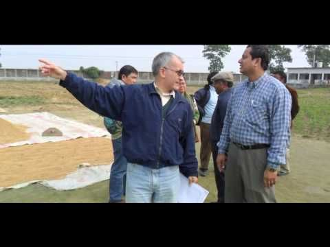 Proyecto 'No me gusta la verdura' 2014 - YouTube