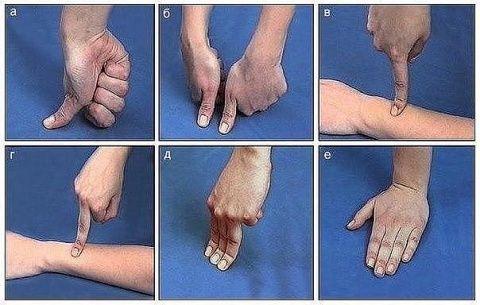 Лечим себя Упражнения для пальцев (шиацу)  Наши пальцы могут лечить наше тело.   Гибкость и подвижность пальцев свидетельствует о состоянии внутренних органов. Причём каждый палец отвечает за …