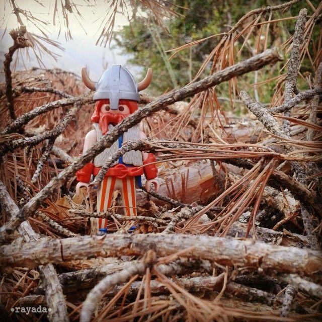 Vickie el vikingo recolectando leña #vikingos #leña #campo #pinos #playmobil #playmofigures #playmobile #playmyplanet #iloveplaymo #somosclicks #playmobilespaña #toyphotography #aesclick #toyhumor #playmoworld #playmobilfans #toy