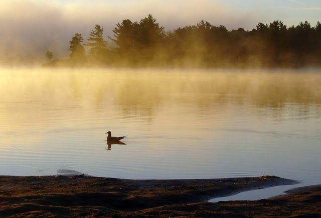 Grundy Provincial Park, Ontario