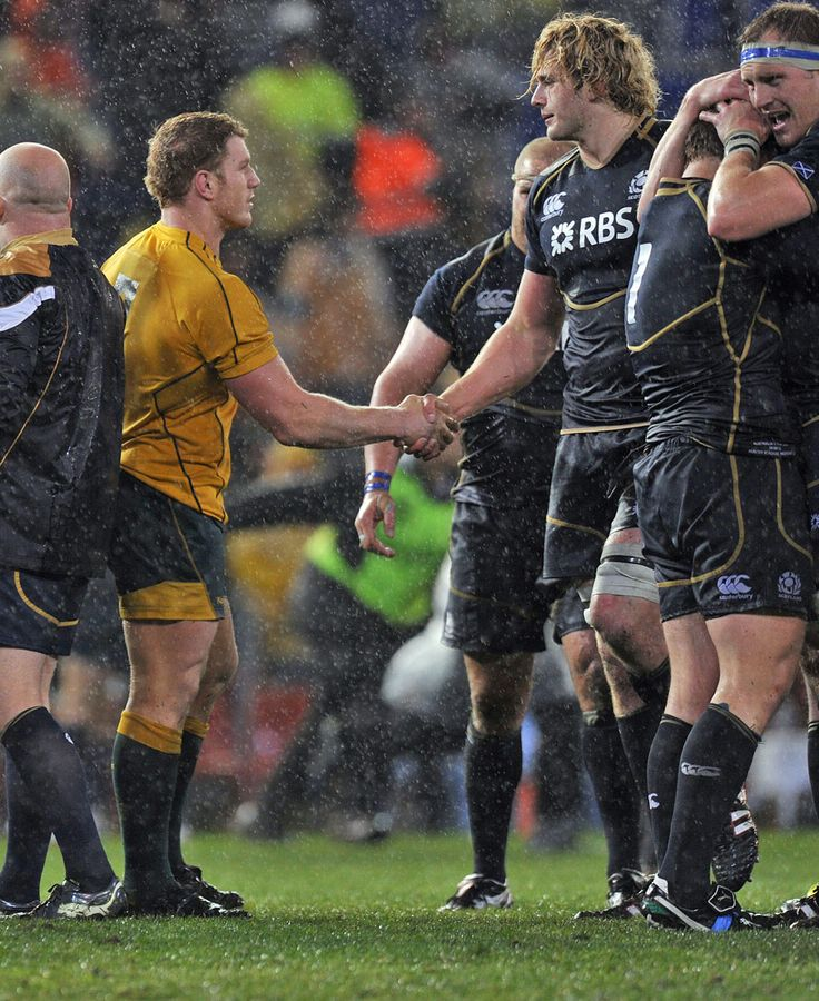 Wallabies skipper David Pocock shakes hands with Scotland lock Richie Gray