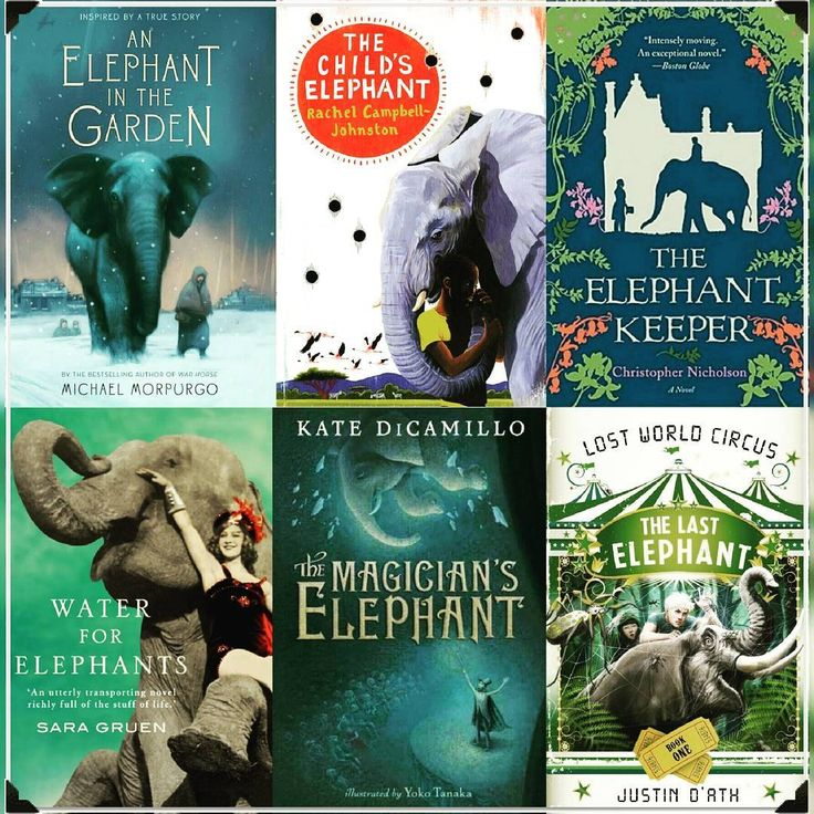 New Blog Post! https://goo.gl/c7pz39 COVER CHARACTERISTIC: Elephants #covercharacteristic #bookmeme #bookcover #bookcovers #bookcoverdesign #elephants #elephantbook #thelastelephant #thechildselephant #waterforelephants #anelephantinthegarden #themagicianselephant #theelephantkeeper #bookworm #bookish #bookaddict #booknerd #bookgeek #booklover #bookreader #bookgram #booksofinstagram #bookstagram #bookstagrammer #instabook #bookblog #bookbloggers