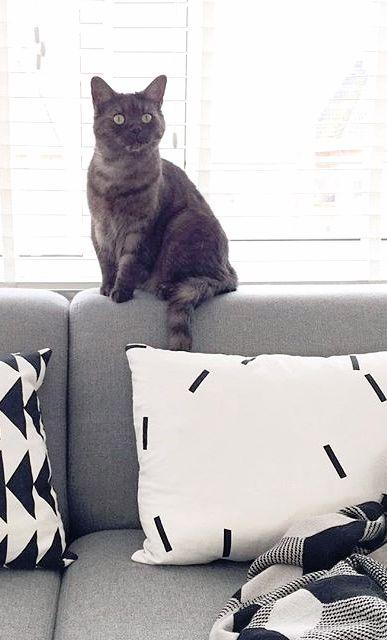 Via NordicDays.nl | Ferm Living Cushion | Joannegelderman88