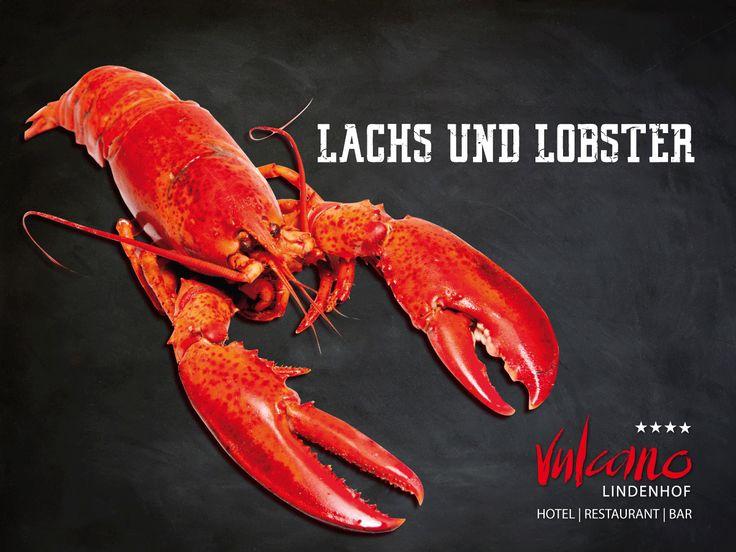 Juli 2016 | Genießen Sie ab sofort, leckere Lachs- und Hummergerichte, im Vulcano Lindenhof Restaurant
