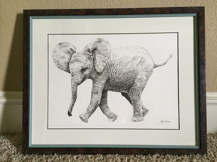 Baby elephant drawing! Pen and ink on 18 x 24 inch 140lb. watercolor paper.