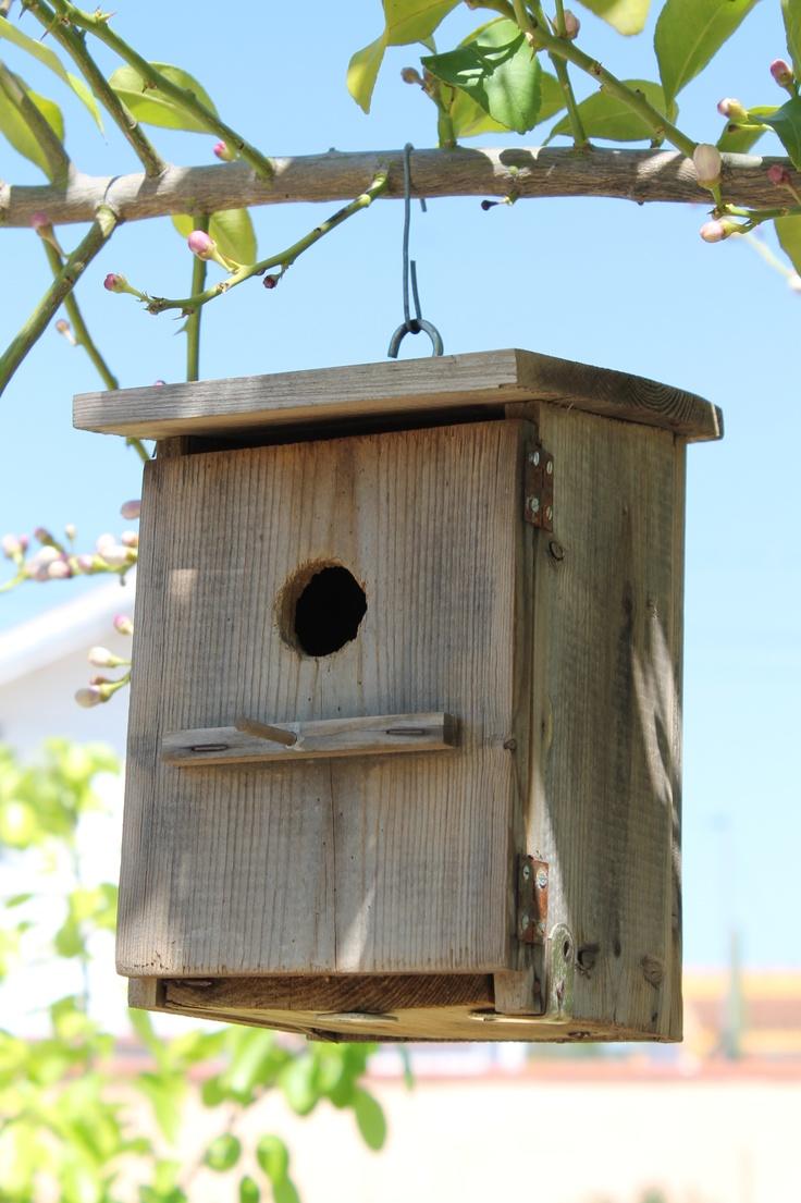 16 best images about casitas de pajaros on pinterest gardens bird houses and decor - Casita para pajaros ...