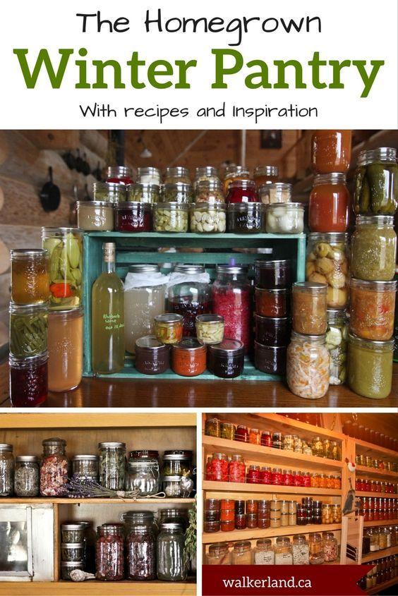 Criando uma despensa doméstica de inverno   – My Pantry/Canning