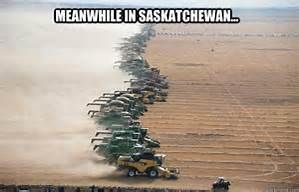 meanwhile in saskatchewan - Bing images