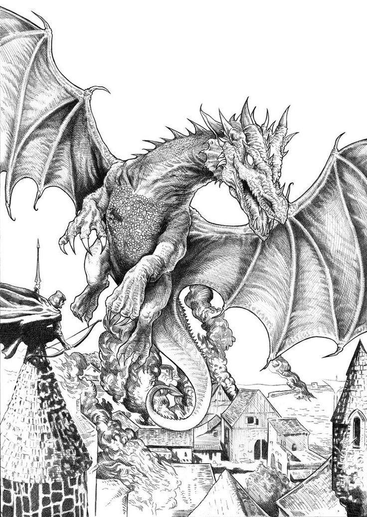 smaugh bw by nachocastro all the drawings hereare for a book call find this pin and more on fantasy dragons fairy coloring for adults art pages - Dragon Coloring Pages For Adults