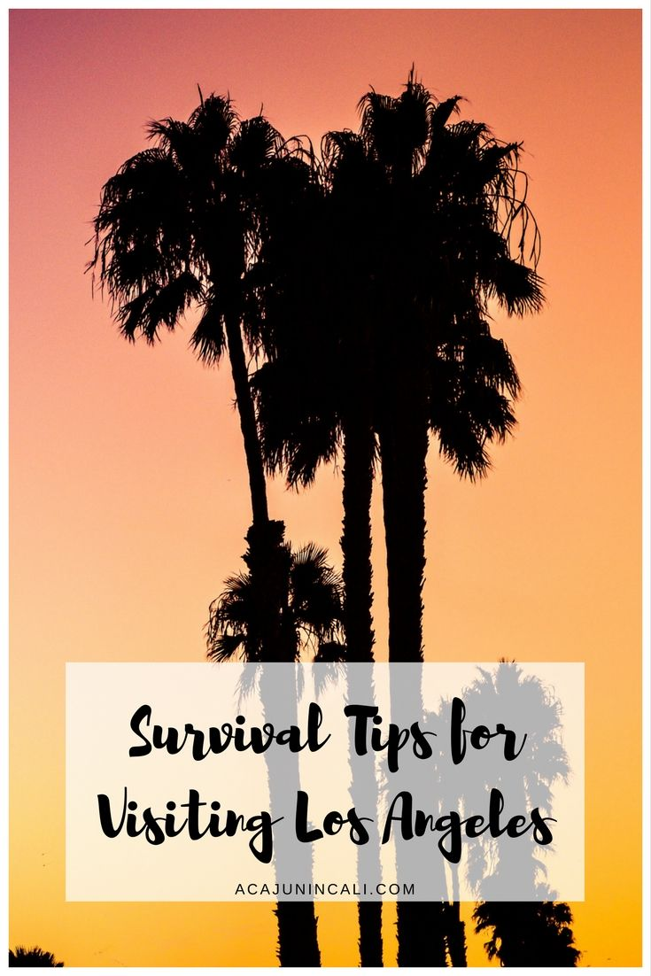 survival tips for visiting Los Angeles | driving in Los Angeles | getting around in Los Angeles | preparing to visit Los Angeles | first visit to Los Angeles | first time in Los Angeles | visiting Los Angeles | where to go in Los Angeles | what to do in Los Angeles | Los Angeles attractions | visiting LA