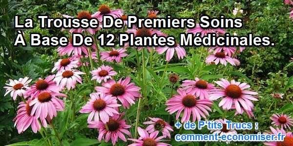 Découvrez les 12 plantes médicinales à emporter avec soi quand on part en voyage.  Découvrez l'astuce ici : http://www.comment-economiser.fr/trousse-premiers-soins-naturelle.html?utm_content=buffera78c1&utm_medium=social&utm_source=pinterest.com&utm_campaign=buffer