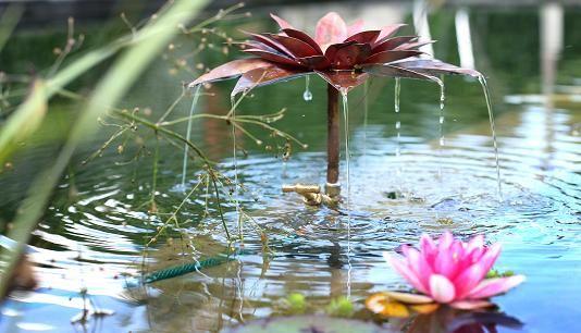 Waterornament Rosa kort