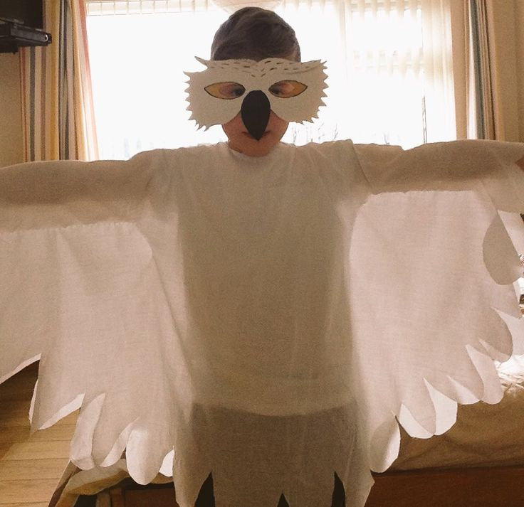 Hedwig costume bedsheet and cereal box