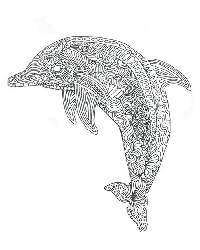 Dolphin Pictures To Color
