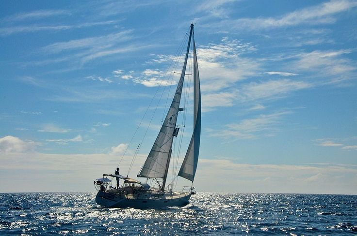 """THOUGHT FOR THE DAY:    """"Twenty years from now you will be more disappointed by the things you didn't do than by the ones you did do.  So throw off the bowlines.  Sail away from the safe harbor.  Catch the trade winds in your sails.  Explore.  Dream.  Discover.    ~Mark Twain"""