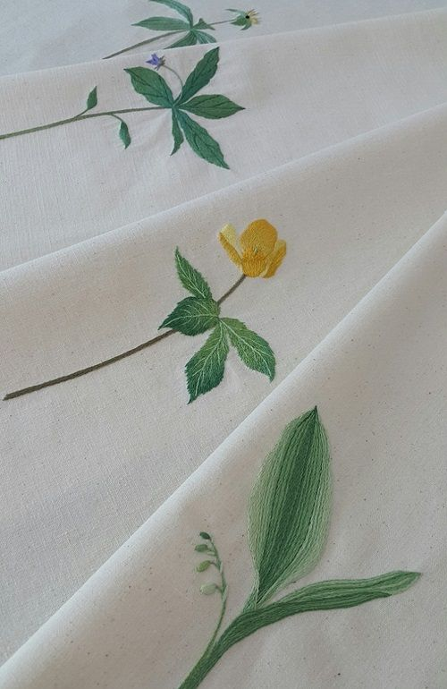 [7월·무아반 3차개강] 에서 수놓을 ' 봄에 볼 수 있는 우리 꽃 ' 금붓꽃, 당개지치, 삿갓나물, 피나물, 알...