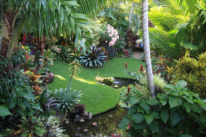 Dennis hundscheidt 39 s garden in sunnybank brisbane great for Tropical garden designs