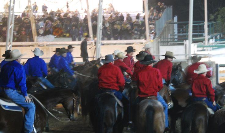 Horseback Riding in Australia - Campdrafting | The Travel Tart Blog