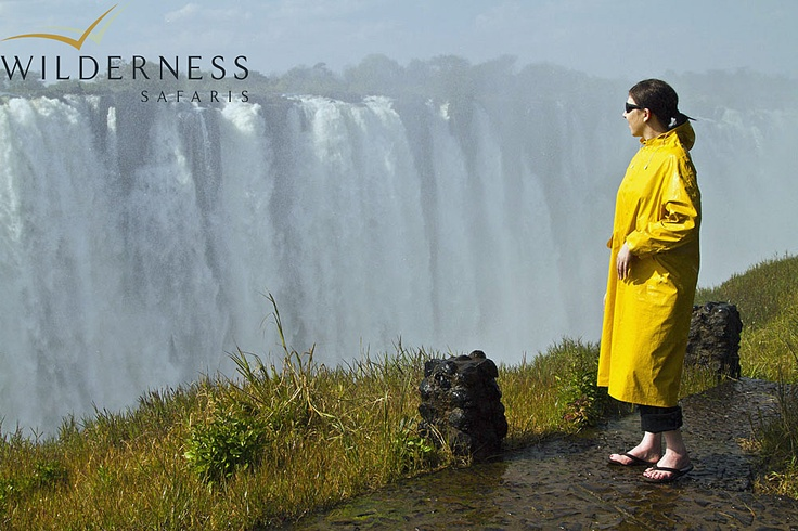 Toka Leya Camp - At 1708 metres wide, Victoria Falls is the most expansive curtain of water in the world and drops more than 100 metres into the sheer Zambezi Gorge.  Located in the south-west corner of Zambia, these Falls and the Zambezi River are the central points in an area of spectacular scenic beauty. #Safari #Africa #Zambia #WildernessSafaris