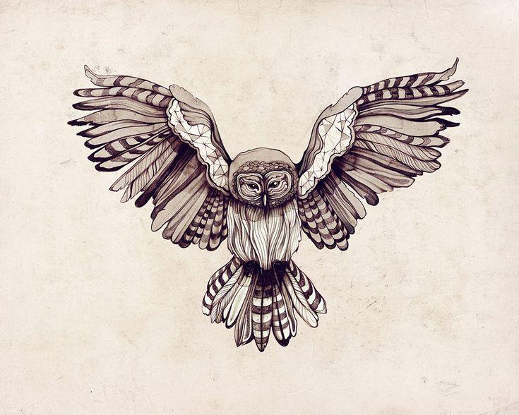 Die Besten 25 Flying Owl Tattoo Ideen Auf Pinterest Eule Zeichnung Einfaches Eulentattoo Und