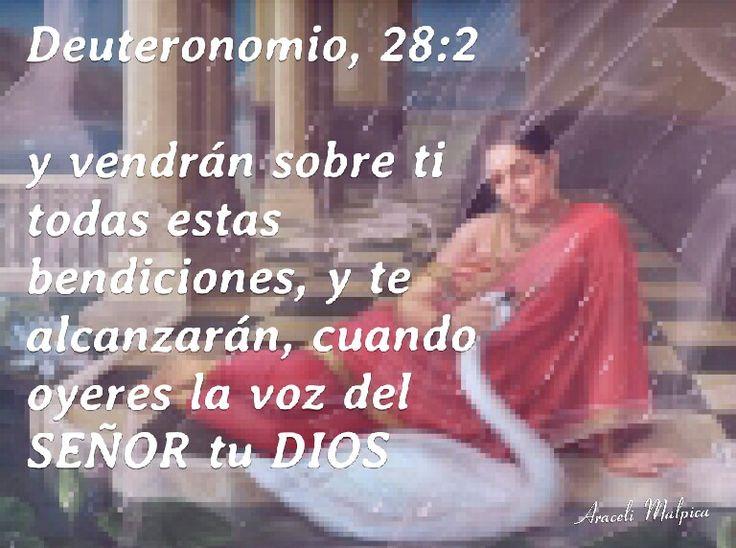 DEUTERONOMIO 28:2 Y VENDRAN SOBRE TI ,TODAS ESTAS BENDICIONES,  Y TE ALCANZARAN,  CUANDO OYERES LA VOZ DEL SEÑOR TU DIOS