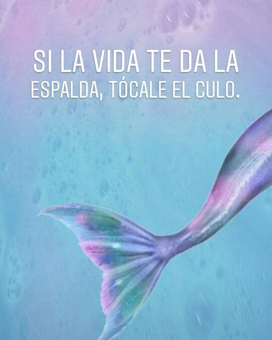 #frases #memes #quotes