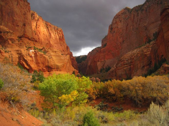Kolob Canyon side of Zions. A very different view of Zions. Two good hikes for kids: Timber Creek Overlook Trail & Taylor Creek Trail (just go as far as you want and turn around and head back.)