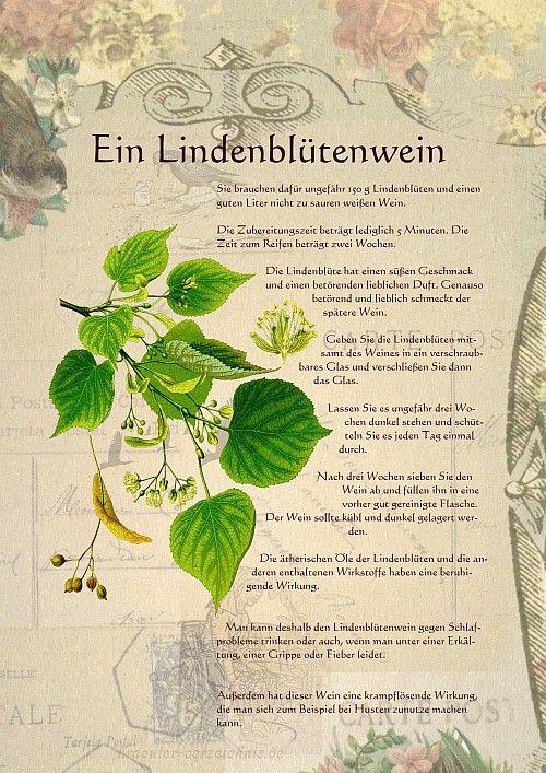 Ein Lindenblütenwein