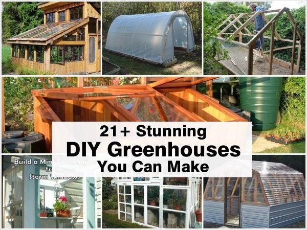 21+ Stunning DIY Greenhouses You Can Make