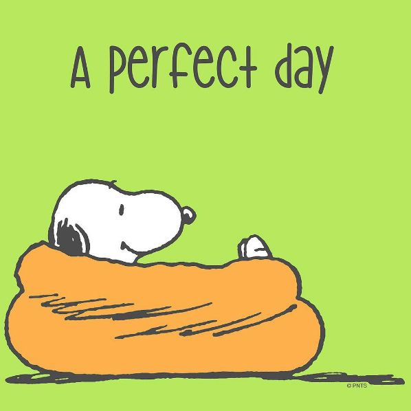 A perfect day for the couch.