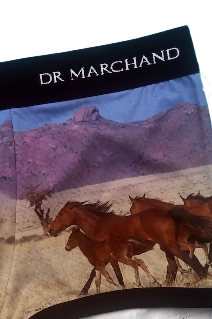 hratsky.com - męska bielizna -  BOKSERKI DR MARCHAND HORSES