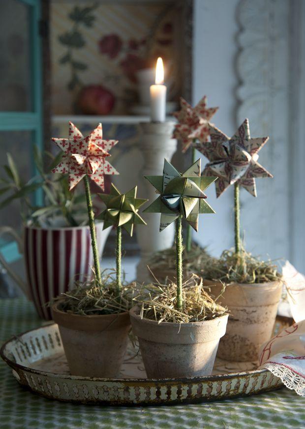 Julepynt - stjerner i potter