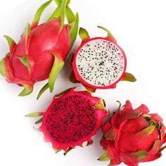 Perbedaan Buah Naga Merah dan Putih : 1. Cara membedakan buah naga merah dengan buah naga putih tidak perlu mengupas atau mengiris terlebih dahulu. 2. Manfaat Buah Naga